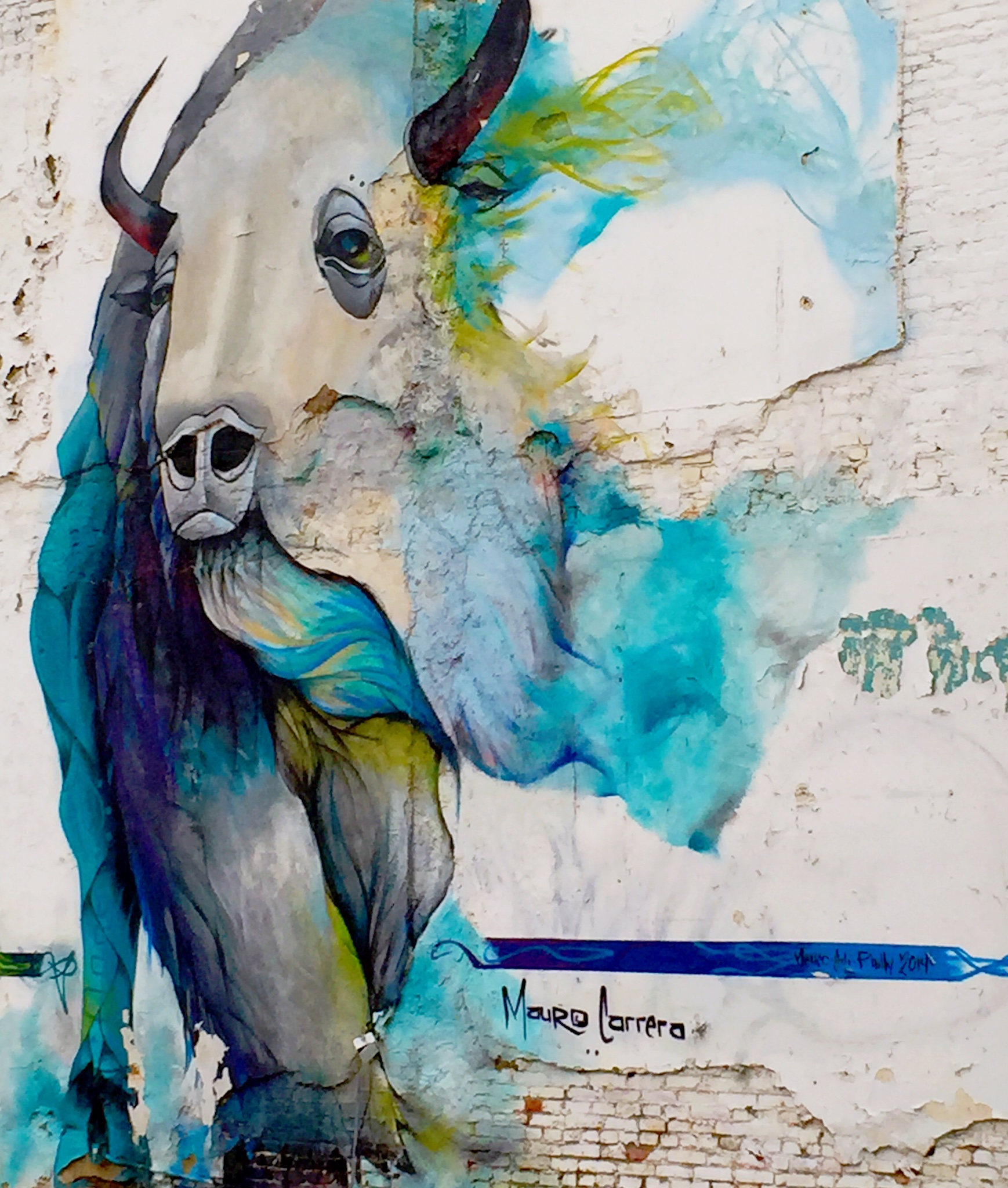 philadelphia mural graffiti wall art | buffalo by mauro carrera
